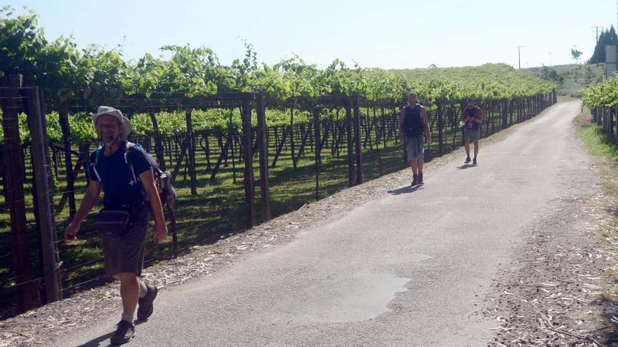 La Variante Espiritual atrae más turistas extranjeros a Ribadumia