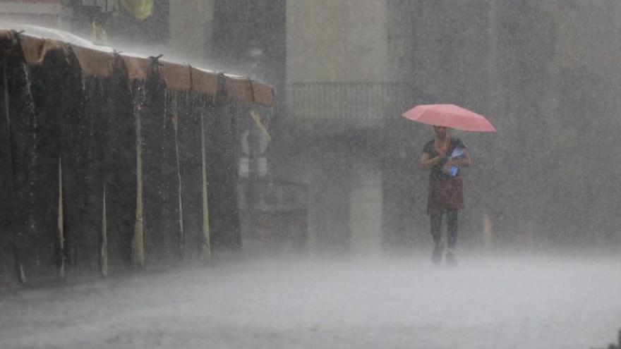 Neguit abans de la pluja i més agressivitat quan fa més calor: com afecten les condicions meteorològiques