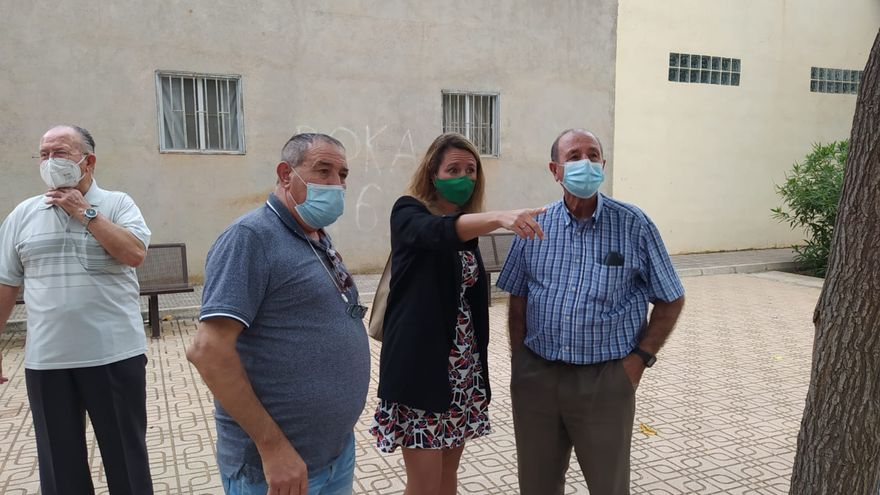 El PP de Castelló alerta del problema de salud pública que suponen los mosquitos