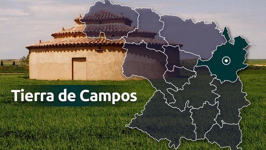Villamayor de Campos saca a licitación terrenos agrícolas de la masa común