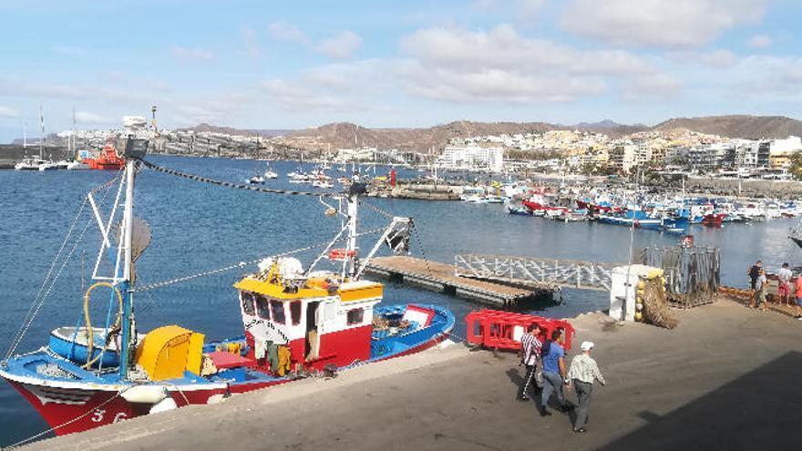 La Pesca Deportiva niega una matanza de atún rojo en aguas de Arguineguín
