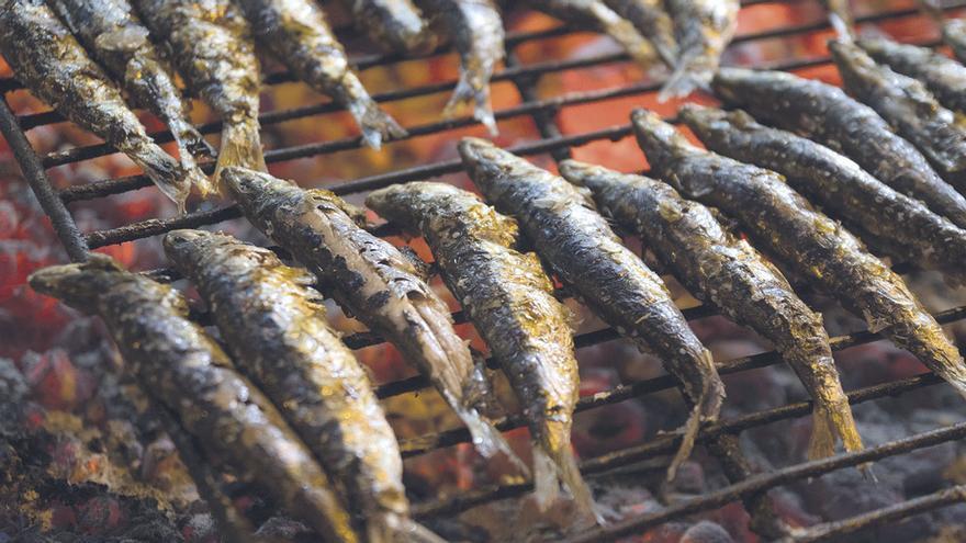 Los pescadores retoman la campaña invernal de la sardina tras un parón biológico de mes y medio