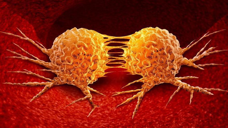 Un nuevo fármaco en nanopartículas elimina las células madre metastásicas