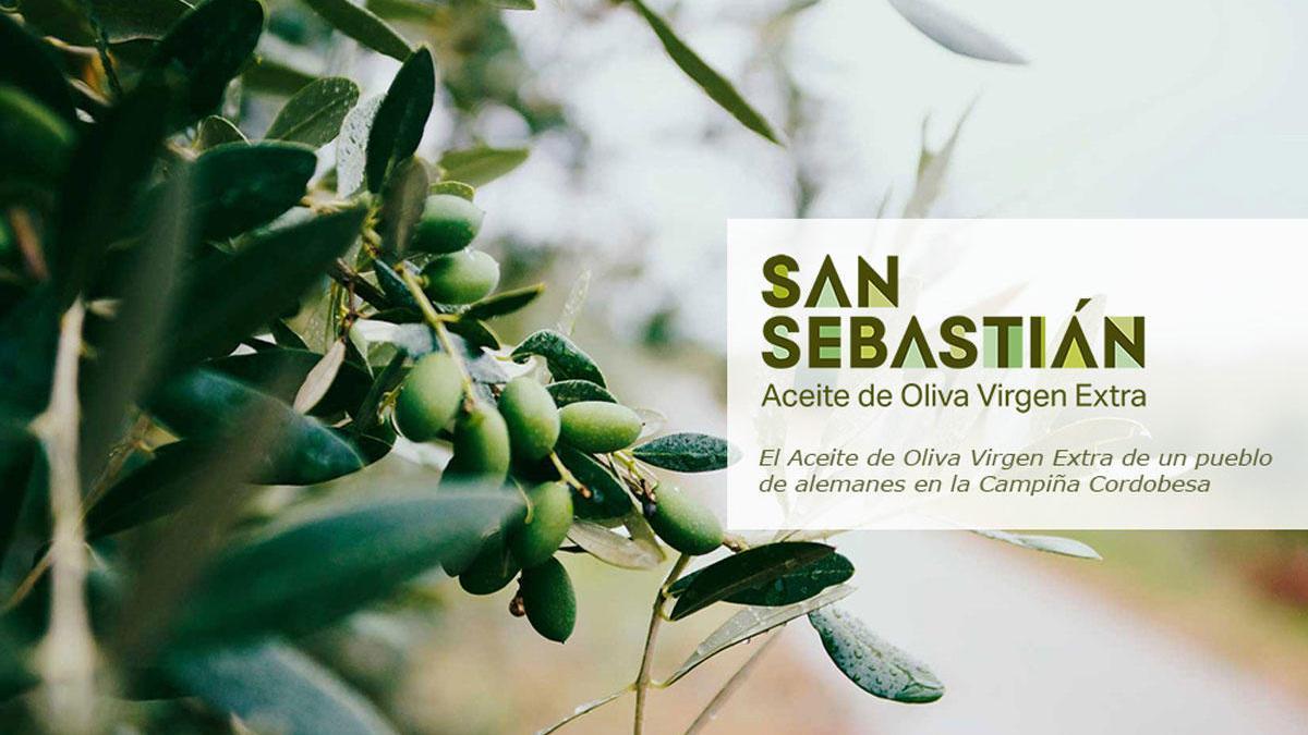 Aceite de Oliva Virgen Extra San Sebastián.