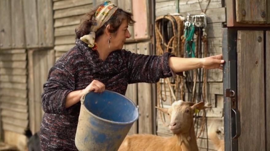 Mujeres rurales. La lucha por el territorio al sur de Europa