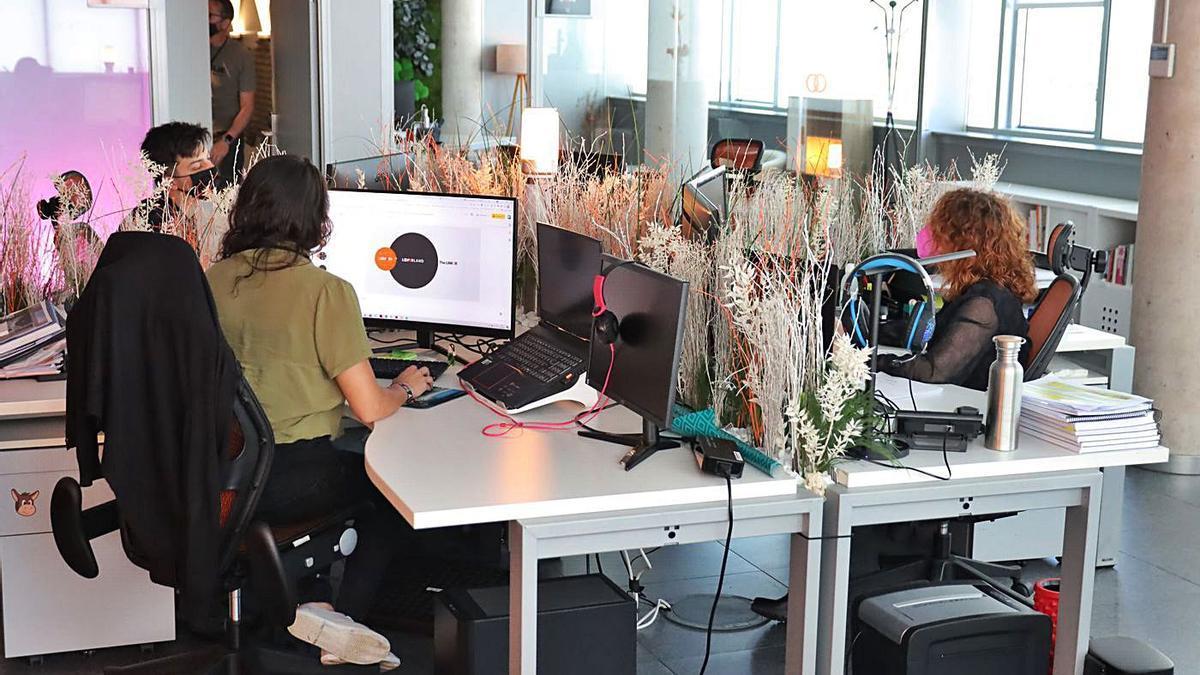 Trabajadores de Looper Experience, empresa castellonense cuyas oficinas están situadas en el Espaitec.      DAVID GARCÍA