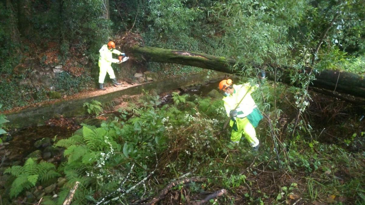 Dos operarios llevan a cabo trabajos de limpieza en el cauce río Rons