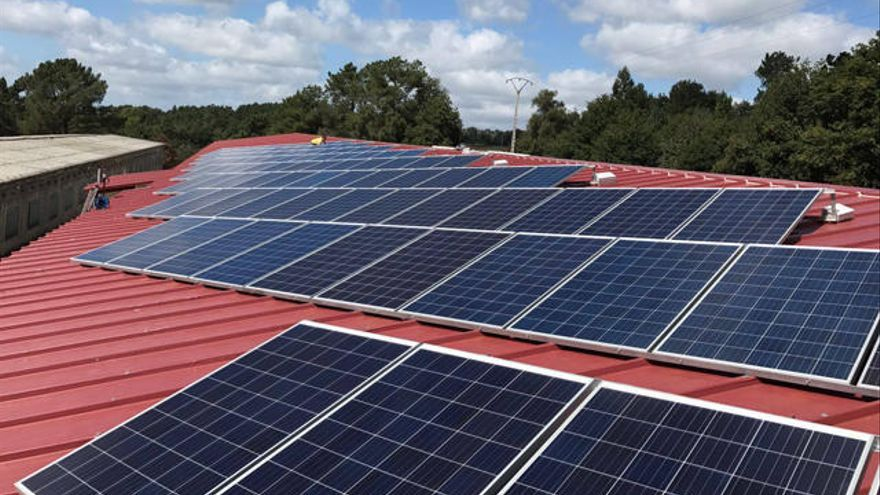 Na vangarda das enerxías renovables dende 1990