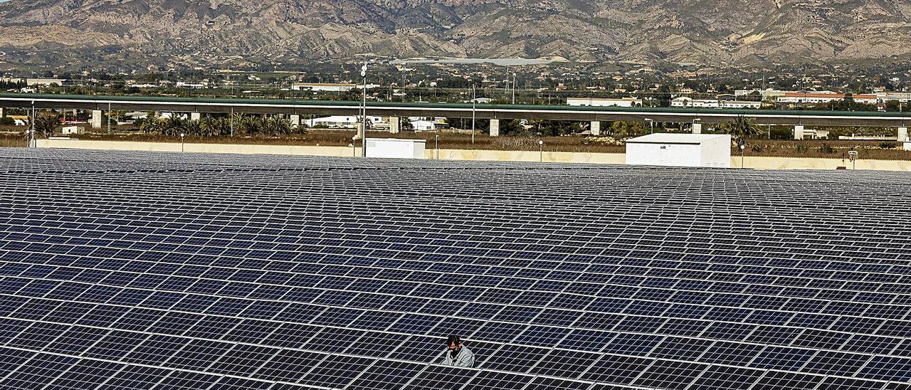 El huerto solar construido por Enercoop en Crevillent tiene capacidad para generar 13.000 Kw. En las siguientes imágenes el director general del grupo muestra        a la ministra de Transición Ecológica la infraestructura fotovoltaica de El Realengo, y el posterior acto sobre comunidades energéticas presidido por Teresa Ribera.