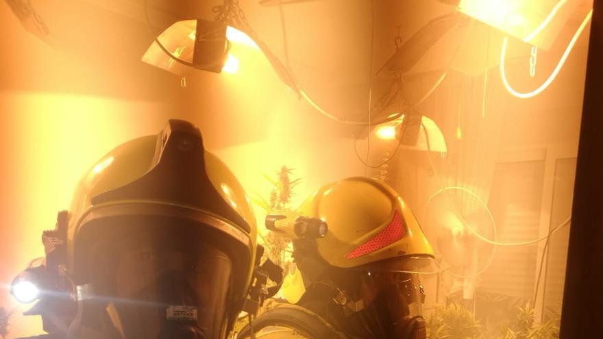Los bomberos se encuentran con una plantación de marihuana al acudir a un incendio en Torrevieja