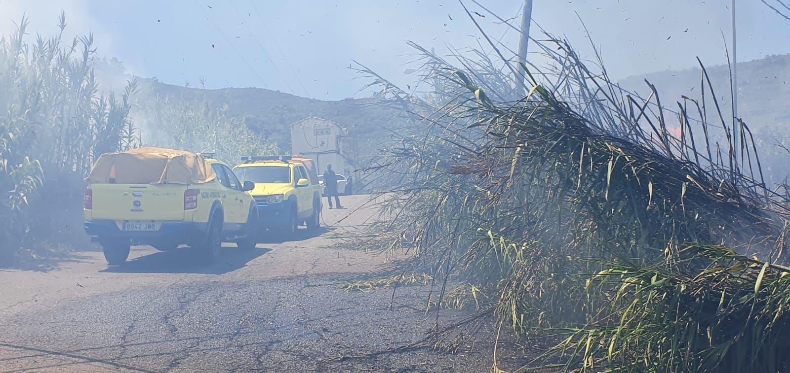 Conato de incendio en Pino Santo (27/06/21)