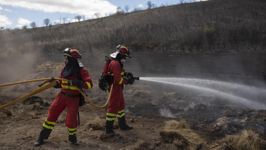 La Junta tratará de reducir la moratoria de 5 años para utilizar los pastos quemados en Zamora