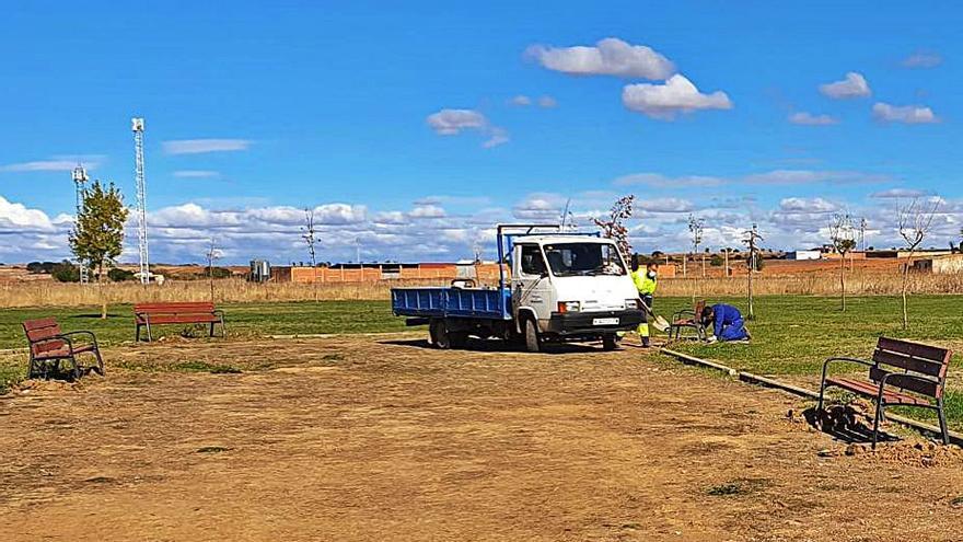 Benavente inicia la instalación de mobiliario urbano en la zona verde de Los Lirios