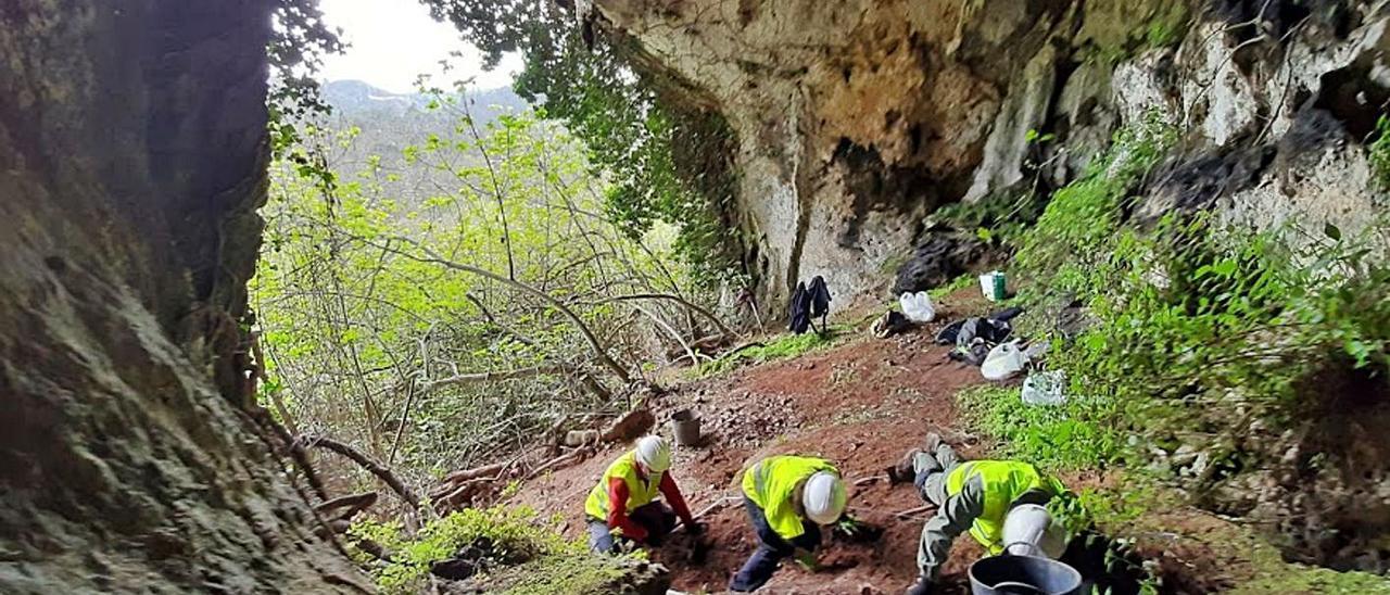 Tareas de excavación en la cueva de Berció.