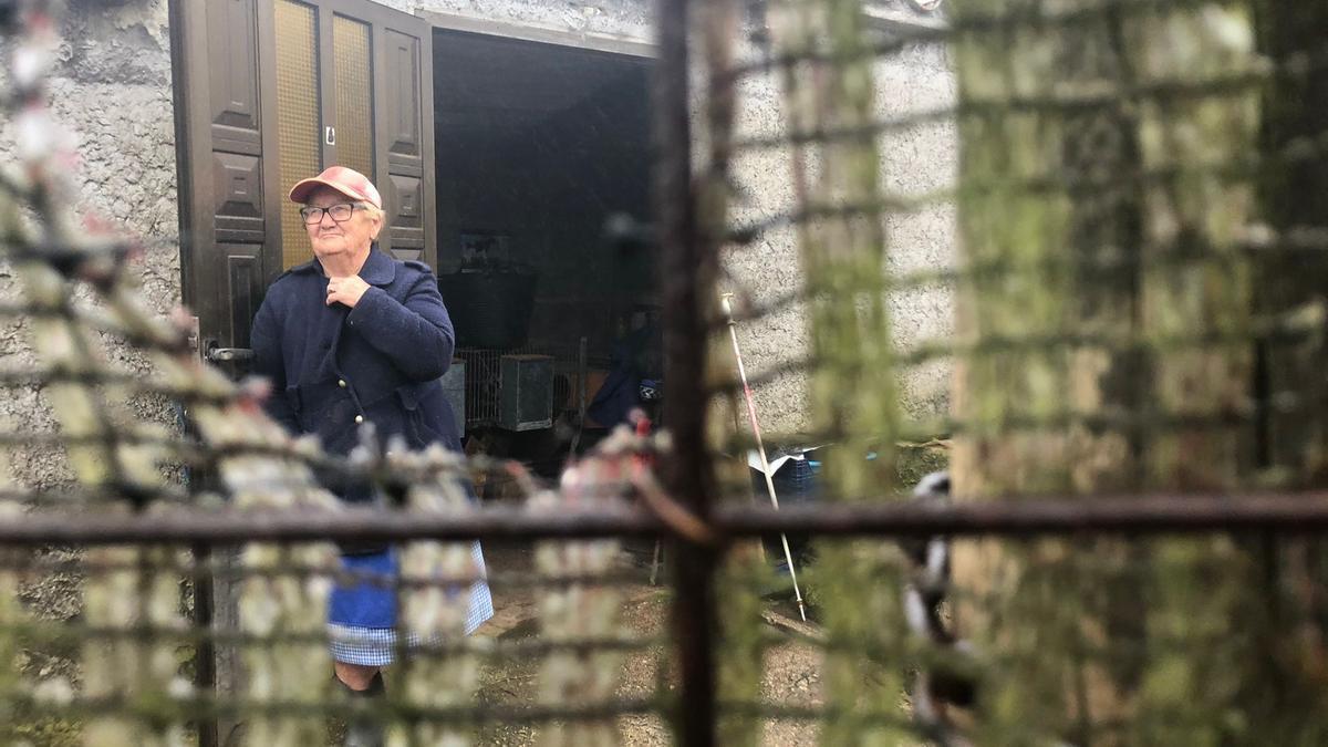 Angelita Suero en su casa de aperos de su gallinero.