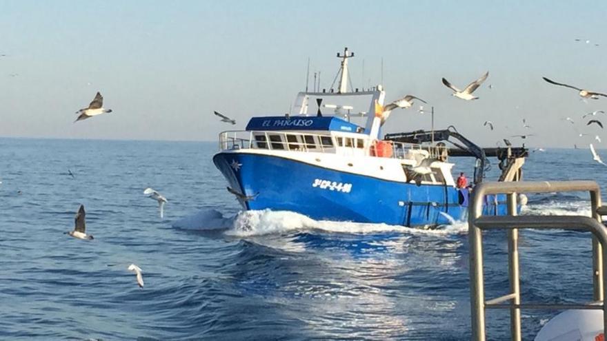 Conviértete en todo un 'lobo de mar' y disfruta de una jornada de pesca en 'El Paraíso'