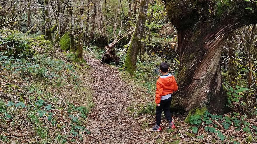 Oscos-Eo estrena este año un trail de montaña para promocionarse