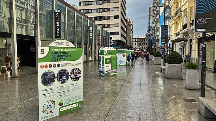 Exposición por un desarrollo sostenible