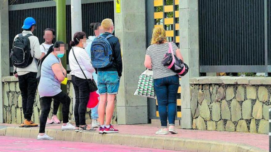 Cruz Roja distribuirá 988.375 kilos de alimentos a 37.846 personas en Canarias
