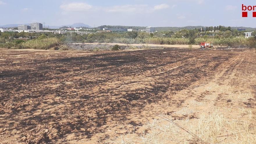 95 municipis catalans estan aquest dissabte en «alt perill» d'incendi forestal