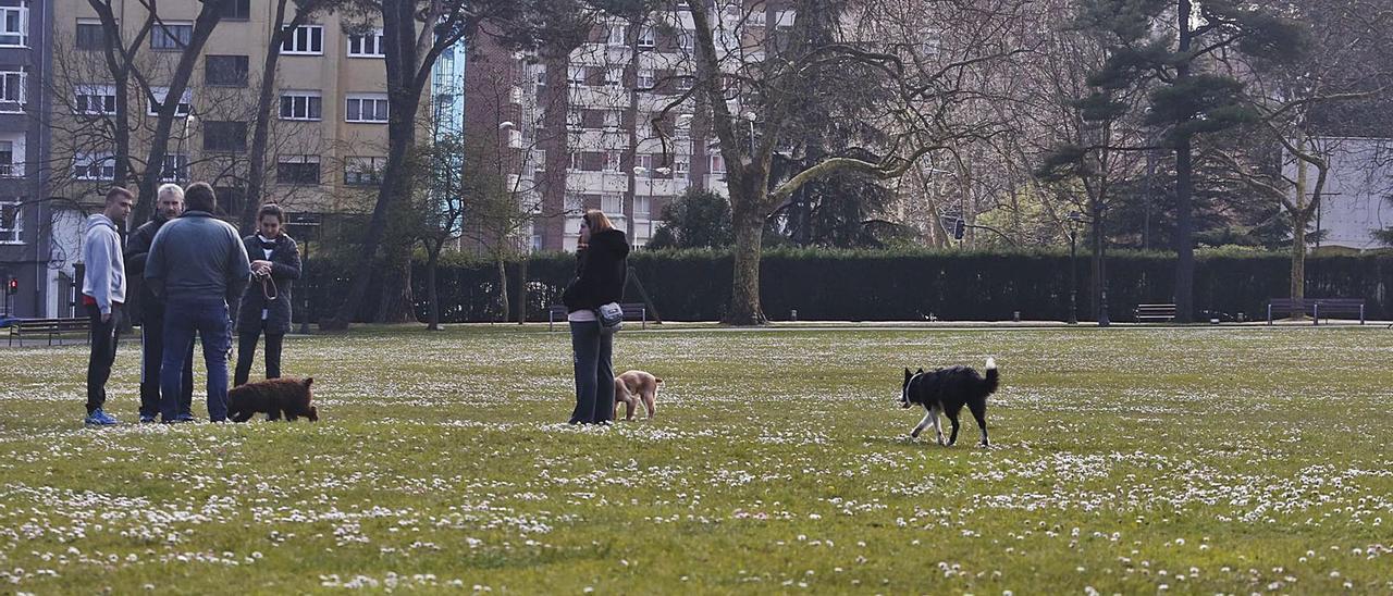 Propietarios con sus mascotas en el parque de Ferrera.