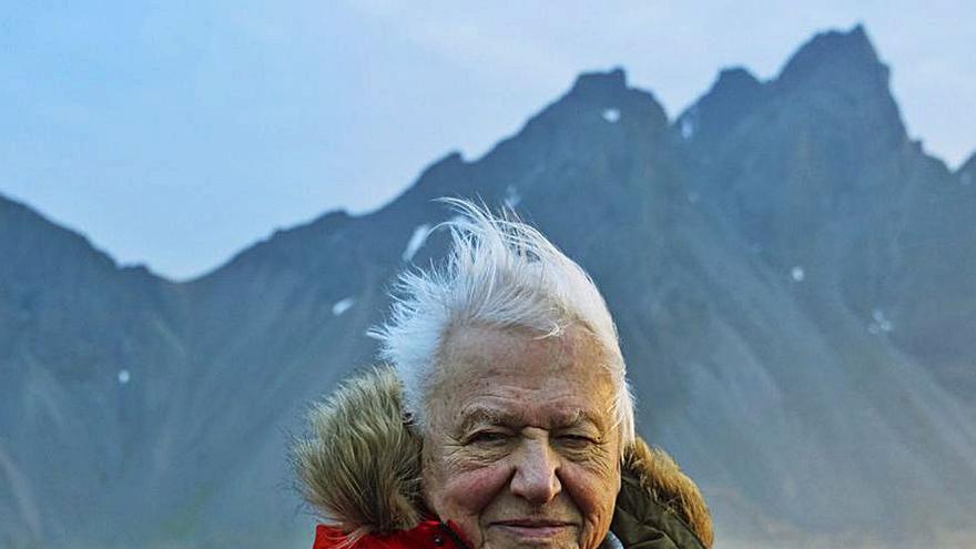 David Attenborough y el final de nuestros días