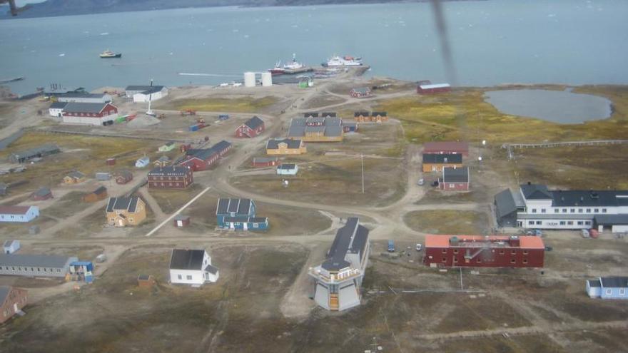 Las plantas de Svalbard