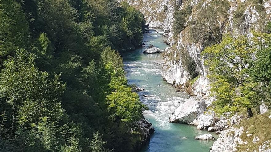 Triste récord en Asturias: siete personas fallecen ahogadas en julio, la cifra más alta de los últimos años