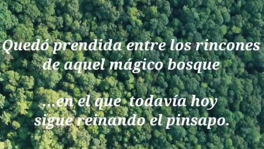Infoca dedica un emotivo cuento de princesas al bombero fallecido en el incendio de Sierra Bermeja