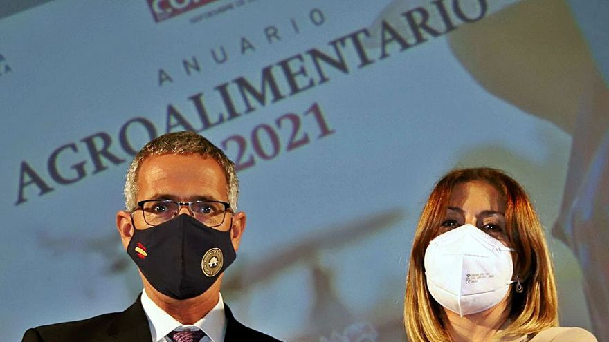 «Los vinos necesitan volver al nivel de ventas anterior a la pandemia»