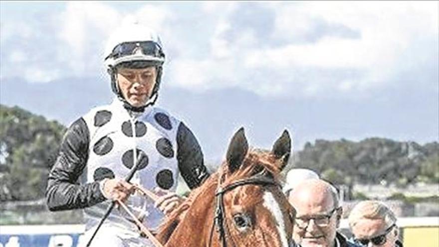 Un caballo llamado 'General Franco'