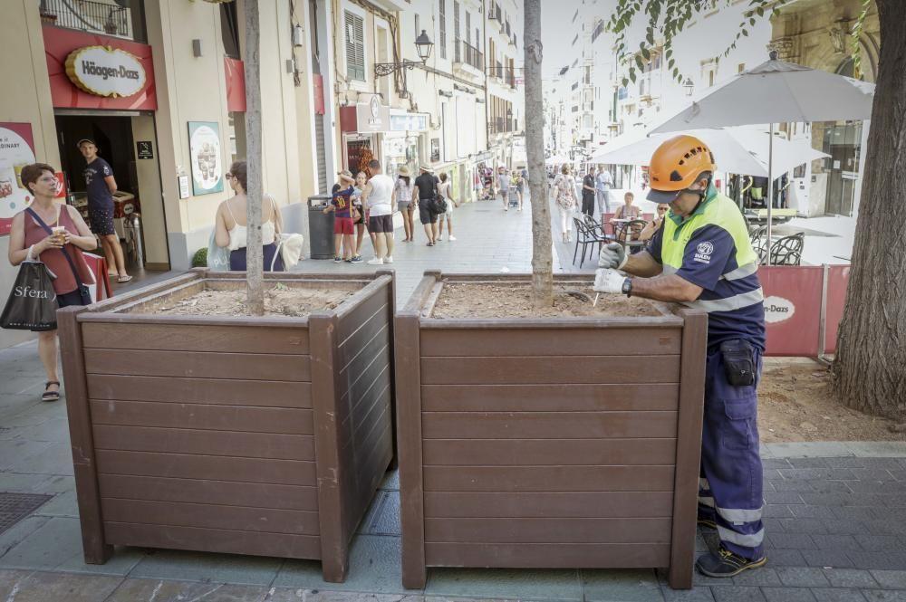 Nach dem Anschlag in Barcelona sind am Montag (21.8.) weitere Lkw-Barrieren in Form von Blumenkübeln aufgestellt worden, diesmal im Carrer Oms - die Fußgängerzone verbindet Plaça d'Espanya mit der Blumen-Rambla.