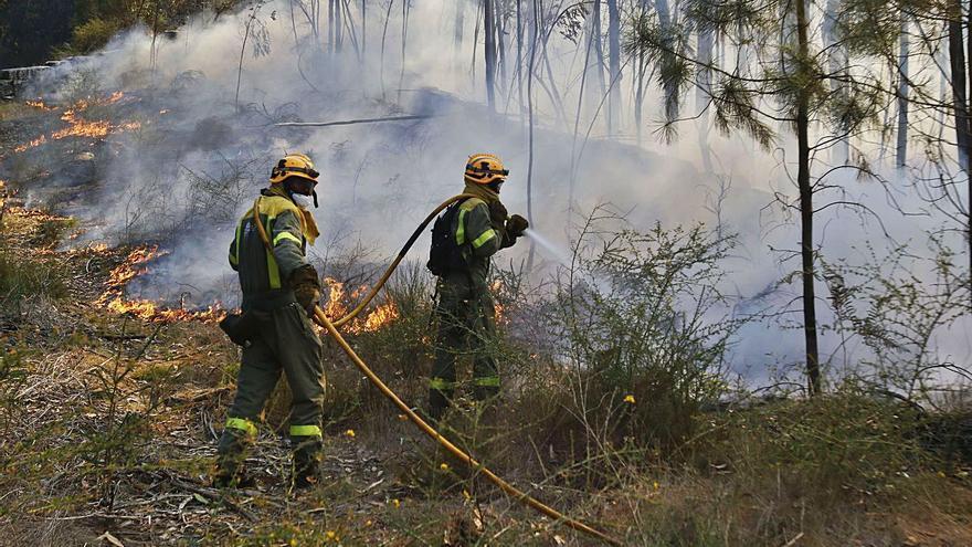 Mil vecinos de Soutomaior ceden terrenos forestales para la prevención de incendios