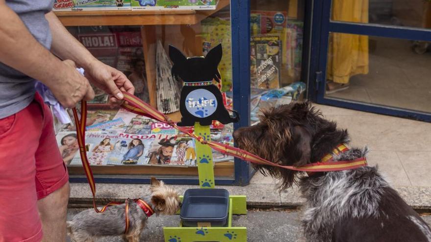 """La polémica """"tasa de perros"""" de Zamora, en cifras"""