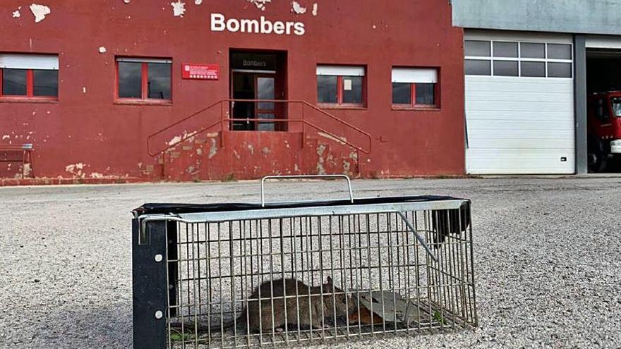 Bombers denuncien que tenen rates i un parc en mal estat