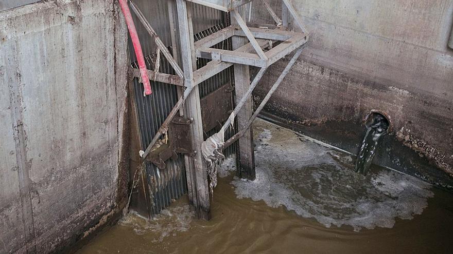 La UMH concluye que los restos del virus en el agua no determinan la incidencia