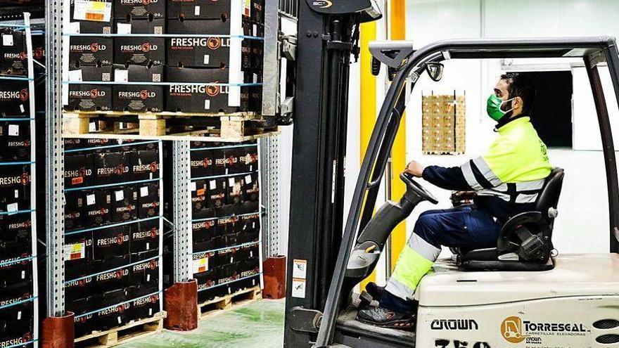 Sudáfrica coloca a Vigo entre los puertos españoles preferidos para exportar sus naranjas
