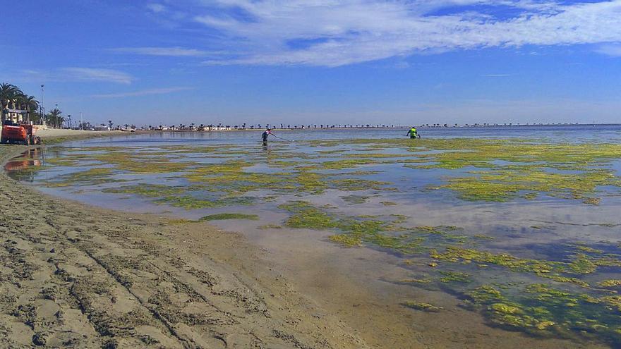 Naciones Unidas estudiará a fondo la contaminación del Mar Menor en junio
