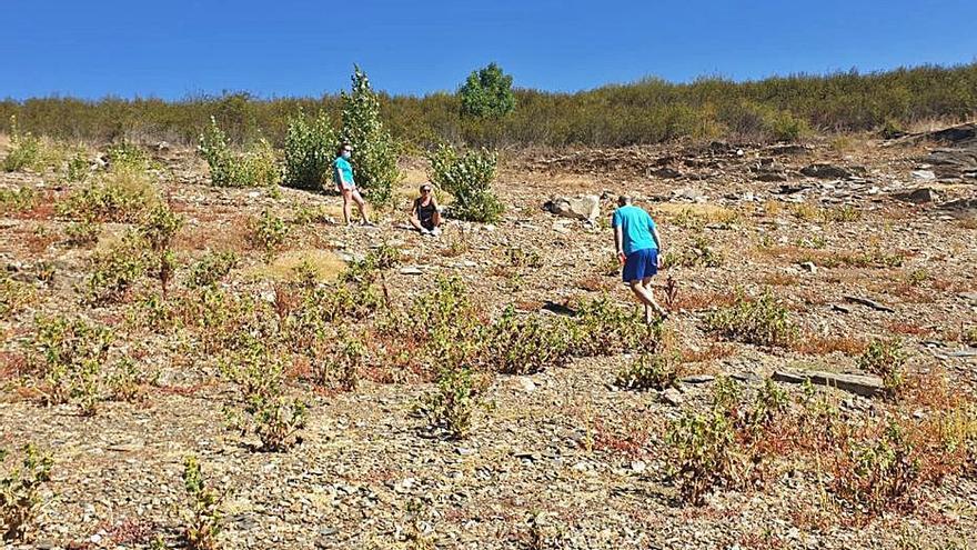 Villaflor pide una playa fluvial en Ricobayo como revulsivo de la zona