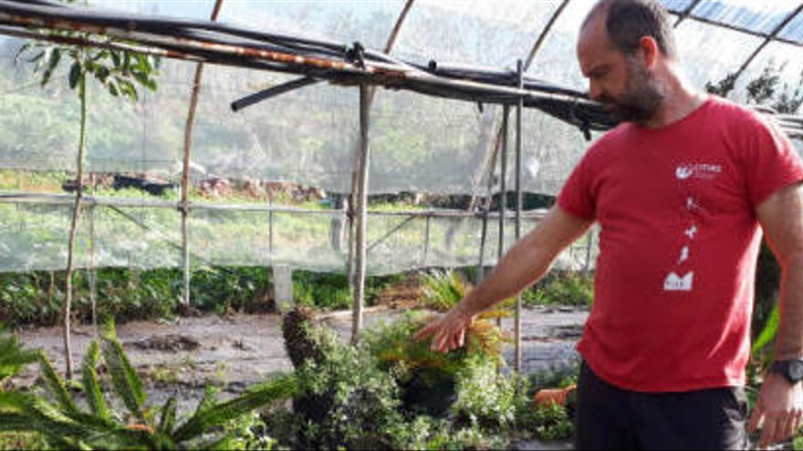 Abwasser aus Kläranlage überschwemmt Gärten in Sóller