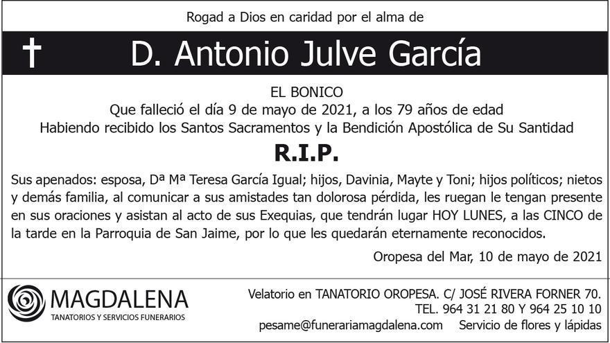 D. Antonio Julve García