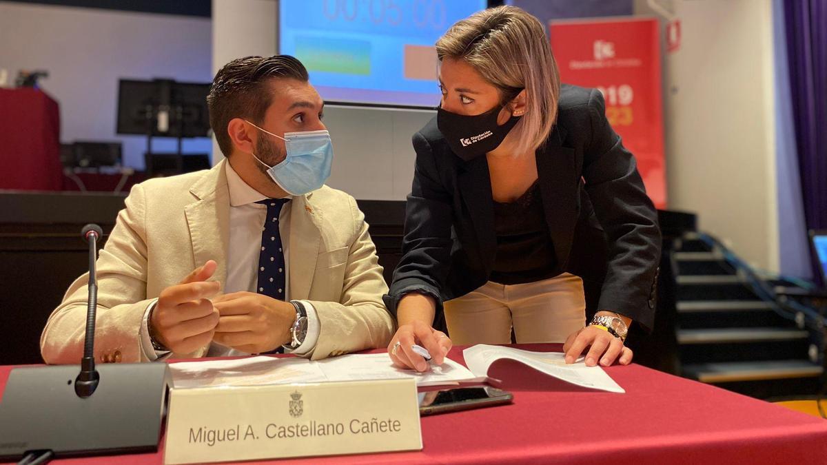 Los diputados de Ciudadanos, Miguel Castellano y Erika Nevado.