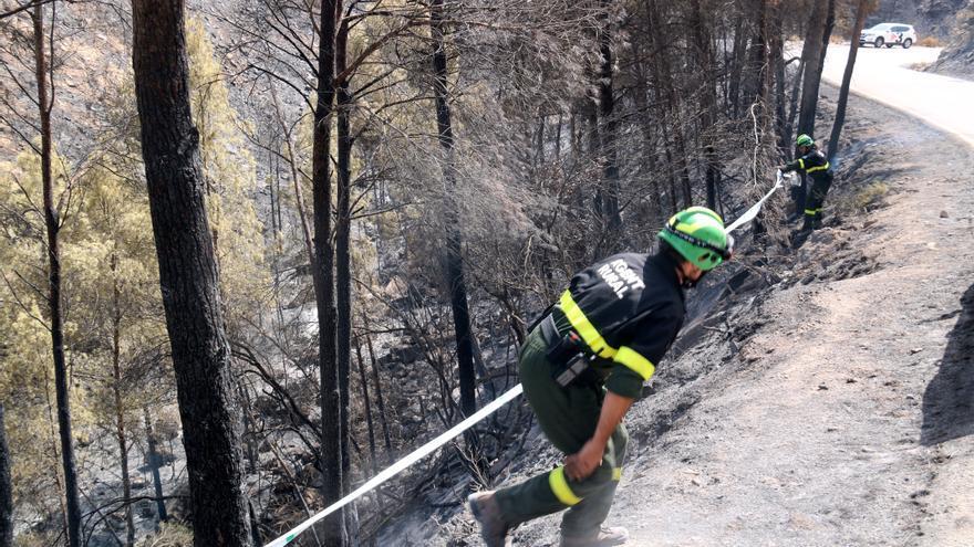 Els Bombers han atès 76 avisos per incendis de vegetació des que va començar l'onada de calor