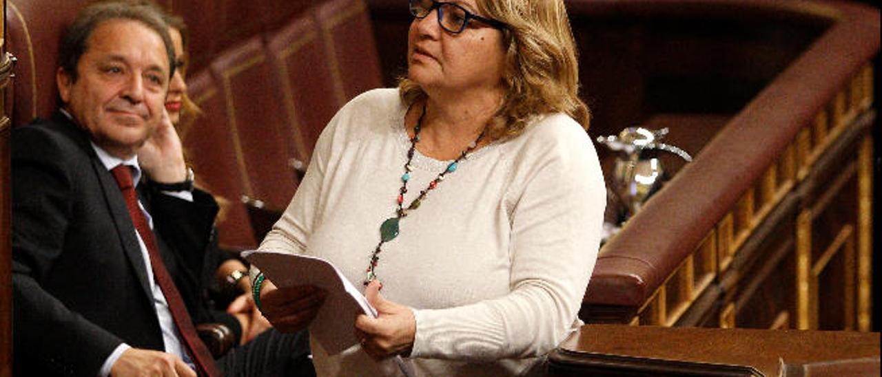 Imagen de archivo de la diputada de Podemos, Meri Pita, durante la toma en consideración del Estatuto canario.