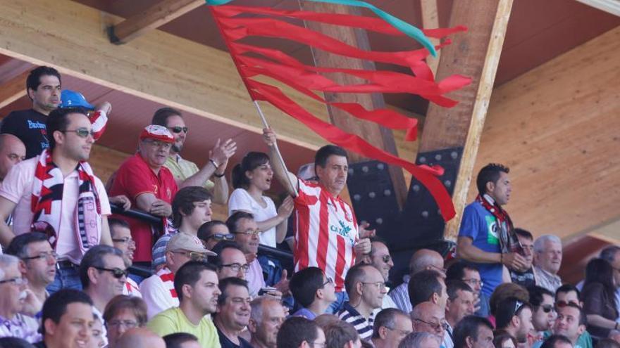La provincia de Zamora no tiene actualmente ninguna bandera oficial reconocida