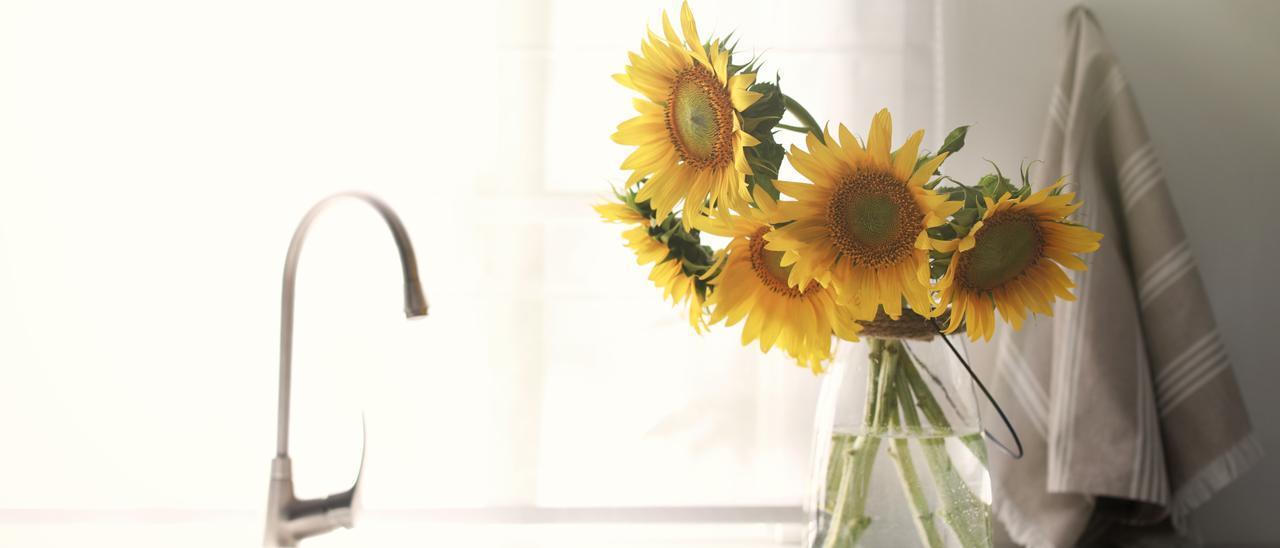 Los girasoles también se pueden colocar en la cocina o en el baño