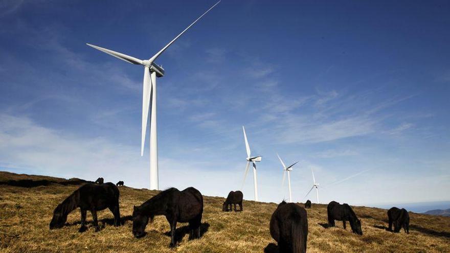 Iberdrola redobla el seu compromís: 350 projectes en dos anys