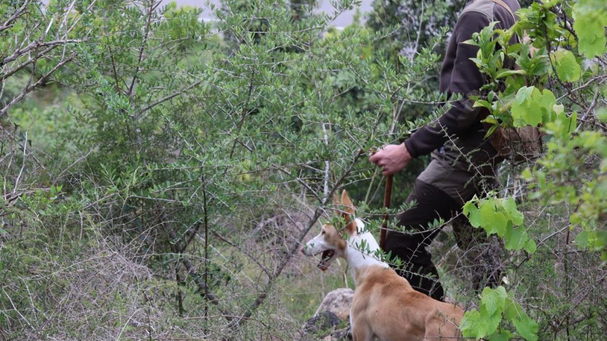 La primera jornada que estará dirigida a jóvenes con curiosidad por el mundo de la caza y el entorno rural para que puedan vivir una experiencia in situ.