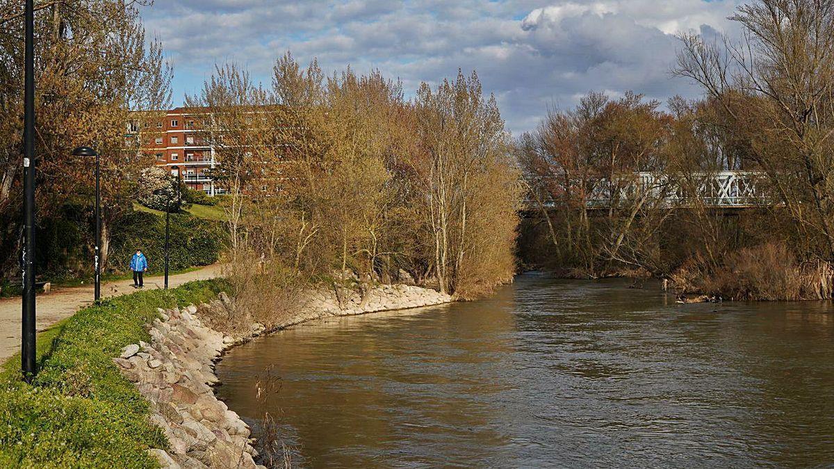 Entorno del río Duero bajo el puente de Hierro, donde se produjo el suceso.