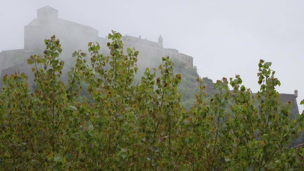Boira, pollancres i el castell de Cardona.
